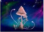 Mushroom-tree