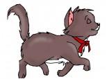 Din pisicile aristocrate