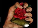Black.Rose
