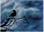crows_in_the_rain