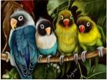 Seria 1. Parrots invasion