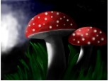 ...Seria 2: mushrooms invasion...