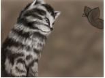 ...Cat;x..