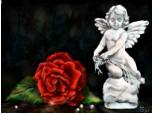 Ti-am adus o floare, o pun in cutia lui drawer :)