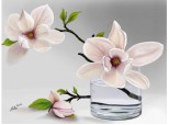 La multi ani celor cu  nume de flori!
