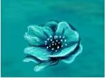 albastrea