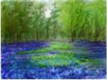 poiana cu flori albastre