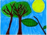 copaci,soare,natura
