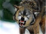 ...cui ii e frica de lup?...