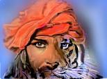 Desen 86056 continuat:Sandokan tigrul Malaeziei