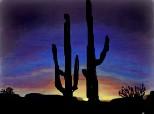 Desert,cactusi....peisaj