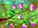 Magnolii inflorte