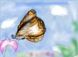 butterfly^^