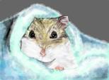hamster ^.^
