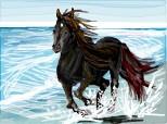 free spirit....