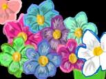 ...alte floricele...