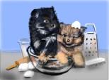 meniul zilei: Dog cake