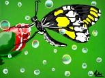 Butterffly in rain